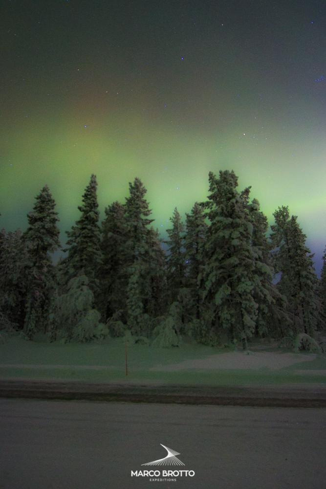 auroraboreal.blog-1231