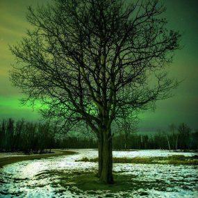 fotos-de-aurora-boreal (19)