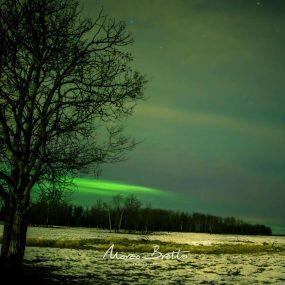fotos-de-aurora-boreal (27)