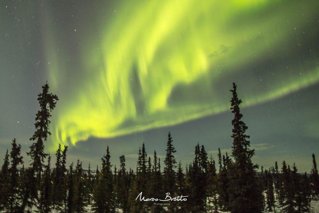 viagem-ao-alasca-2016