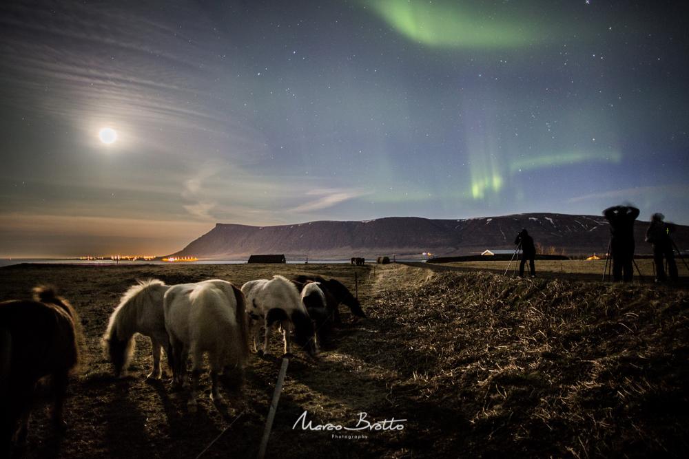 aurora boral na islandia e paisagens
