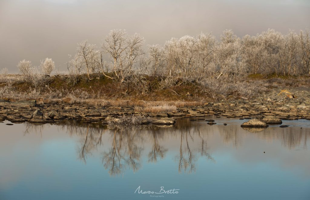 aurora-boreal-em-tromso-paisagem