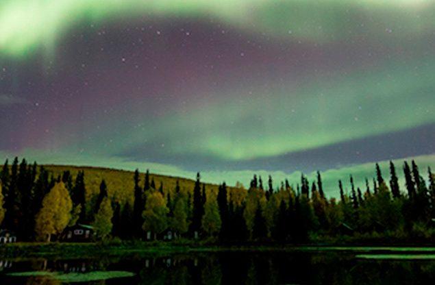 Viajar para o Ártico: 5 coisas que você precisa saber antes de embarcar