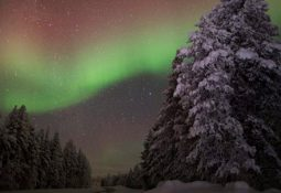 Aurora Boreal Noruega: Caçada em grupo para ver as Luzes do Norte
