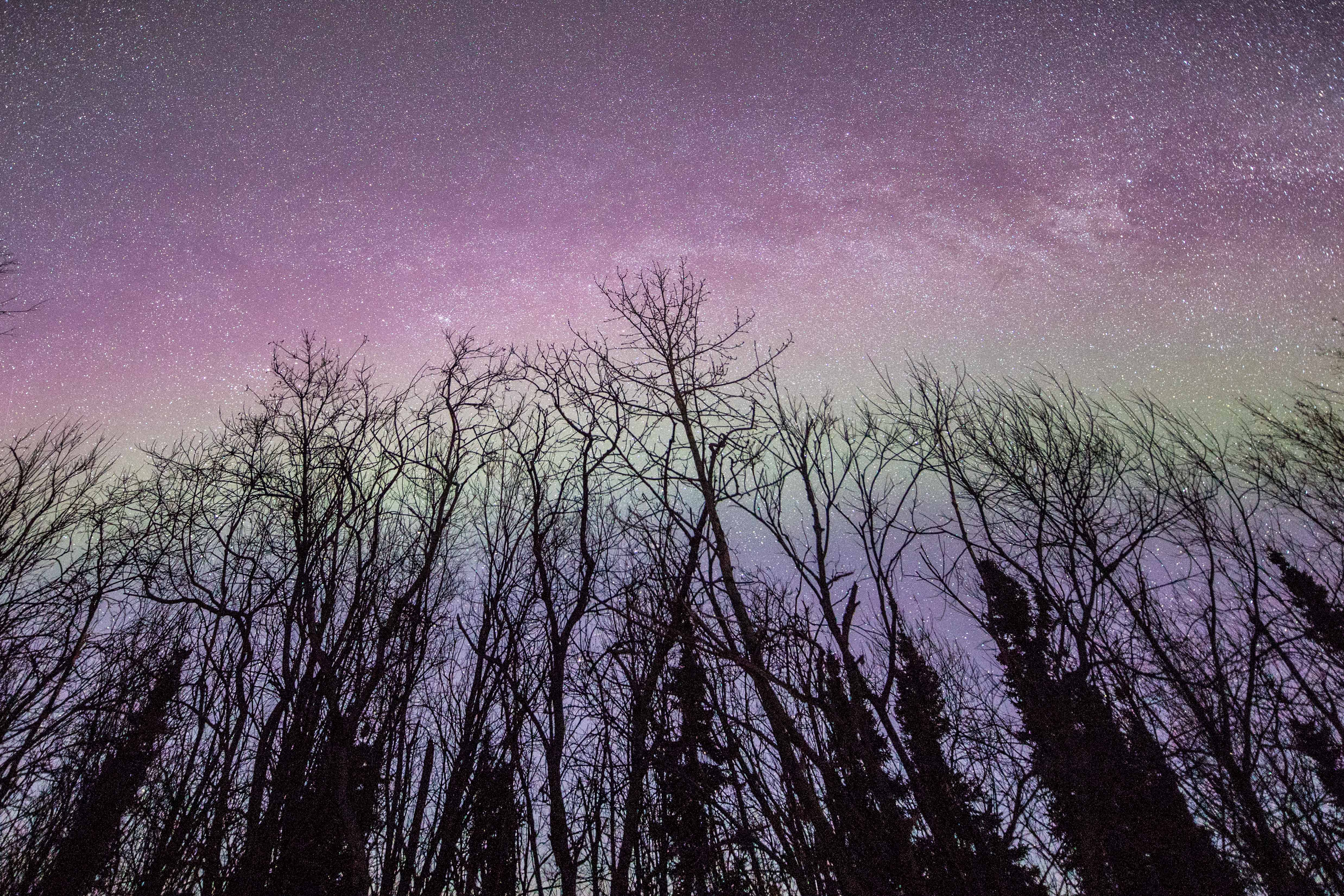 aurora-boreal-no-alasca