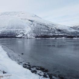 expedicao-laponia-neve-aurora-boreal