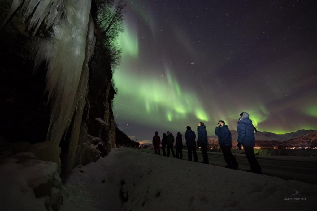 caçada aurora boreal