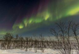 Aurora Boreal Califórnia e Aurora Austral Patagônia poderão ocorrer hoje