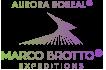 Logo Aurora Boreal