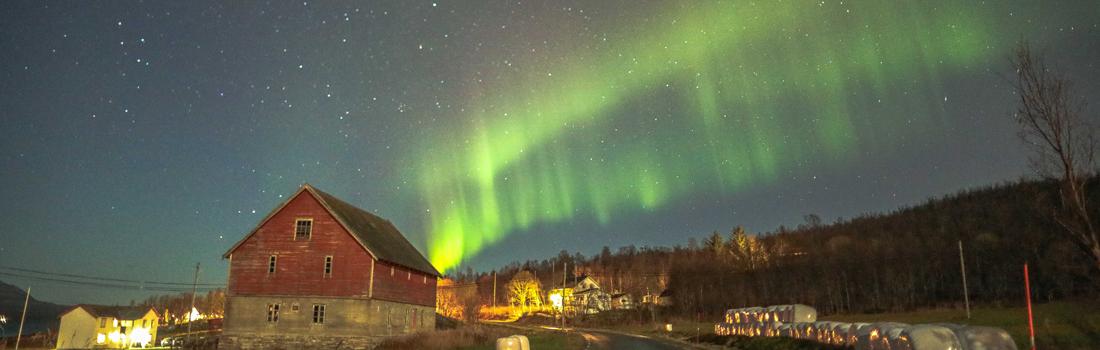 Aurora Boreal na Noruega: viagem inesquecível