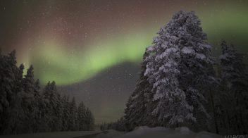 Expedição Aurora Boreal® • Finlândia 2021 (09 MAR – 17 MAR)