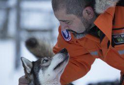 caçador de aurora boreal