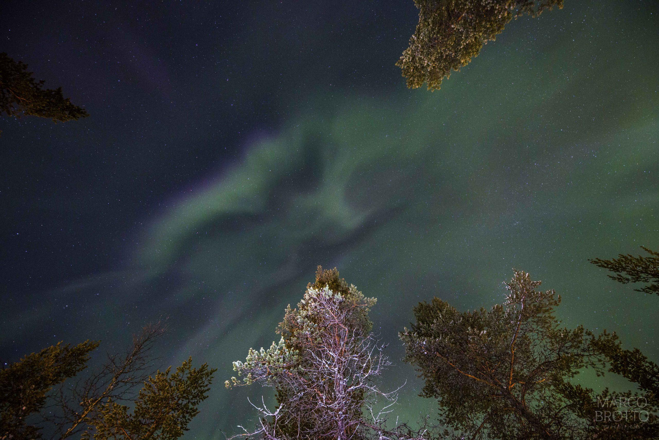 Oval da Aurora e onde ver Aurora Boreal