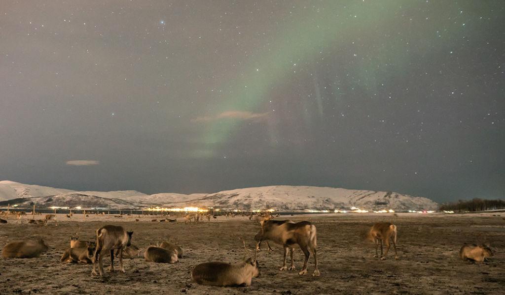 Finlândia: turismo na terra do papai noel!