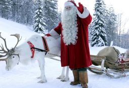 Papai Noel com sua rena